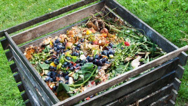 Tudtad, hogy a komposztálással fokozatosan tápanyagot nyújthatunk a növényeknek?